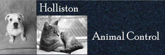 Black and White Photo of Cat and Dog with words Holliston Animal Control next to them